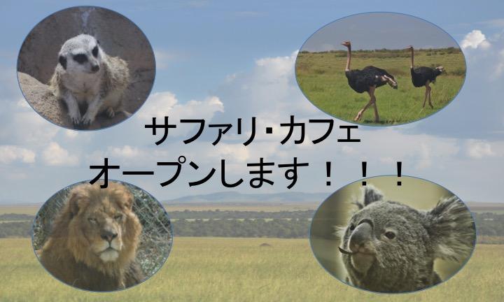 サファリ・カフェ始動!!!